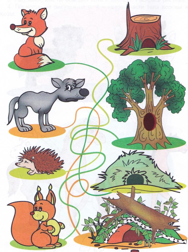 кто где живет дикие животные соедини картинки про