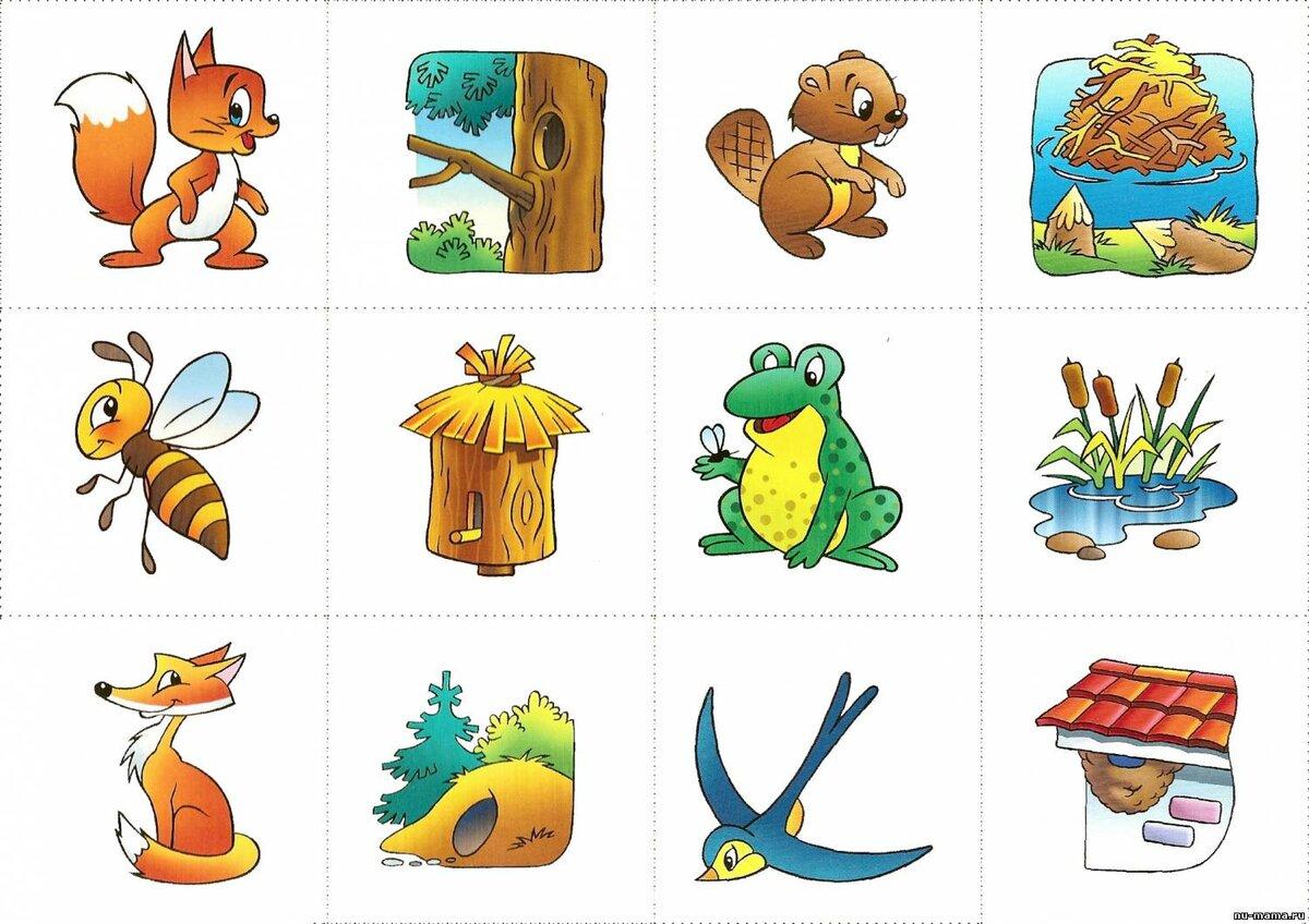 картинки диких животных и их домиков